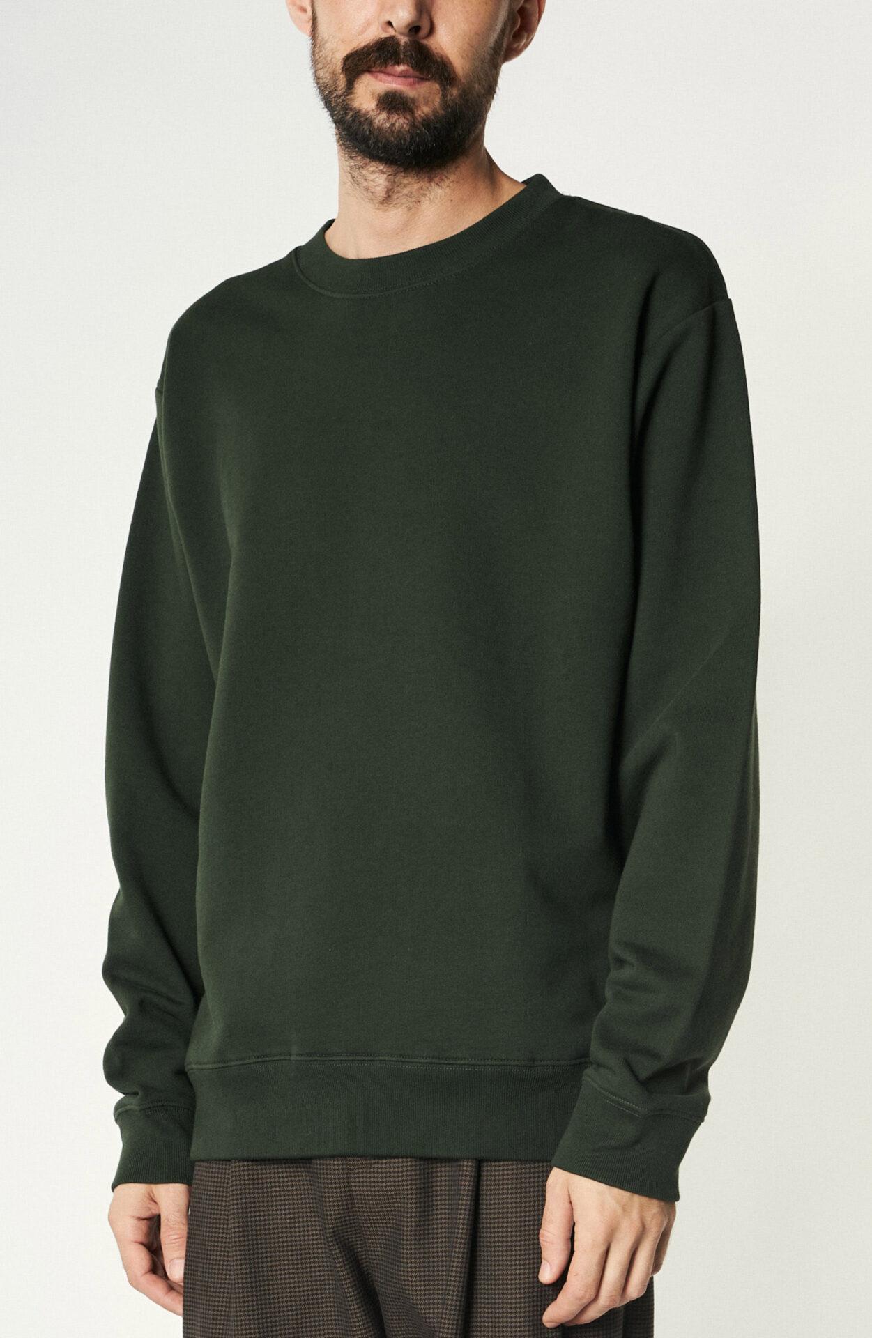 """Grüner Sweater """"Haffel"""" aus Baumwolle"""